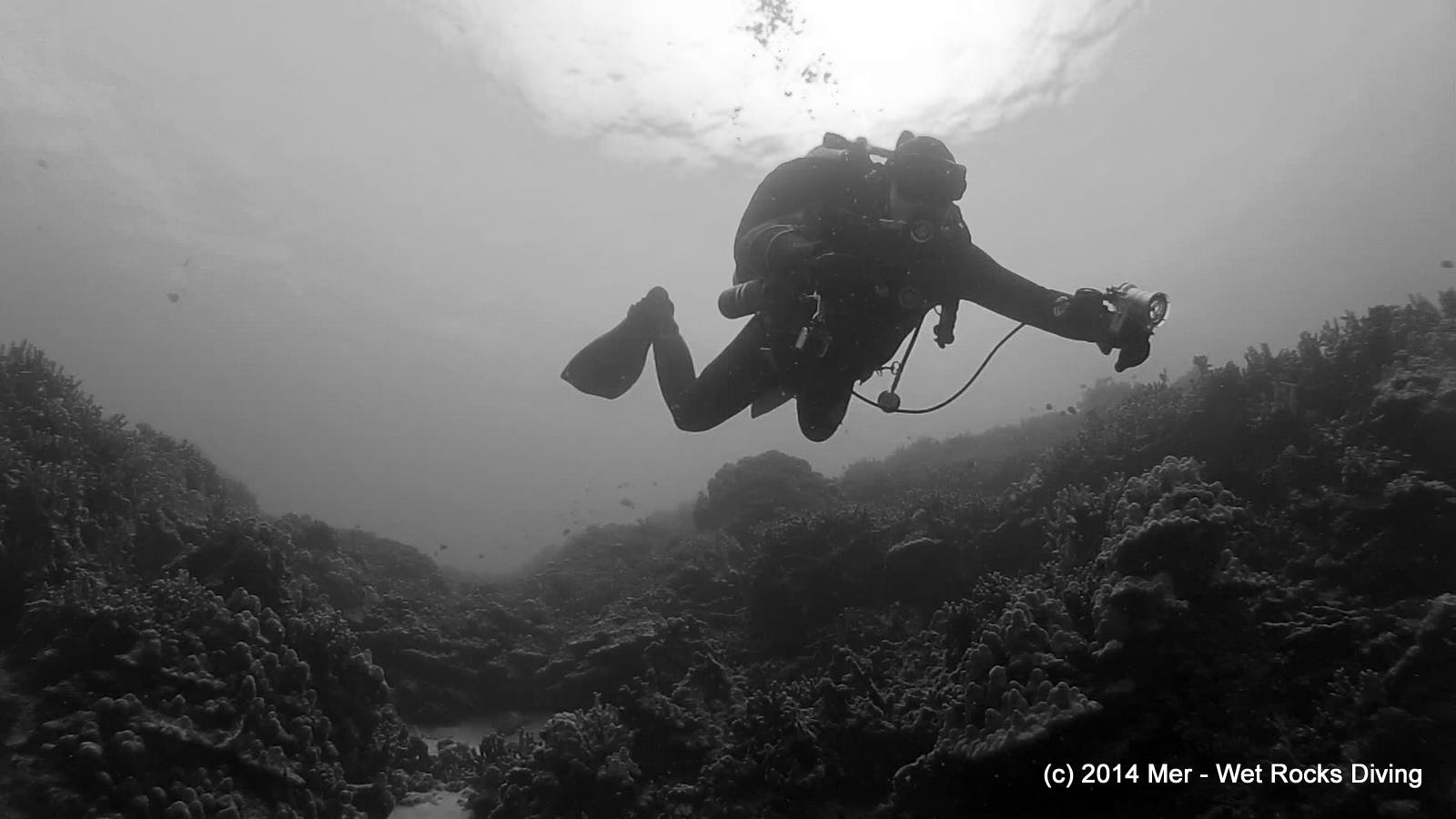 Diver at Two Step in South Kona, Hawaii