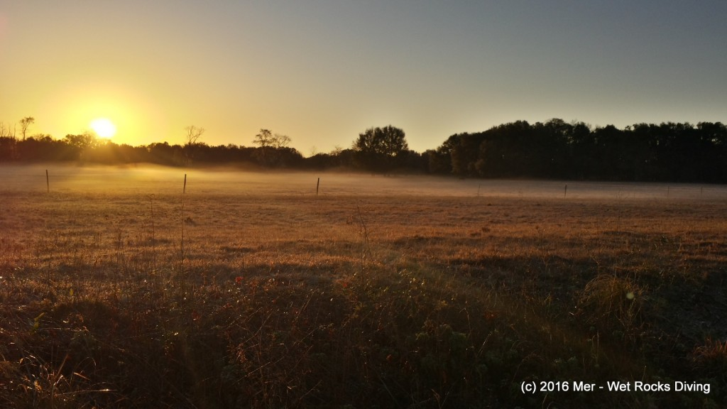 Peaceful morning with ground-fog and great color